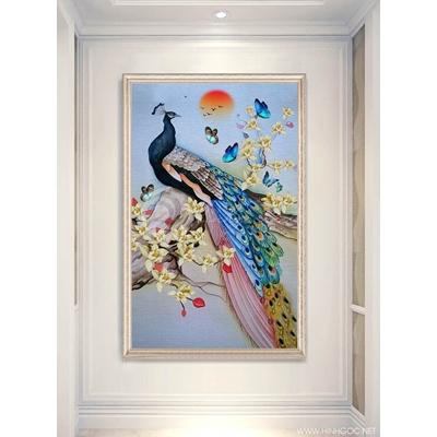 Chim công - 888-62