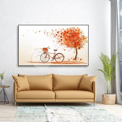 Xe đạp - STTV-75