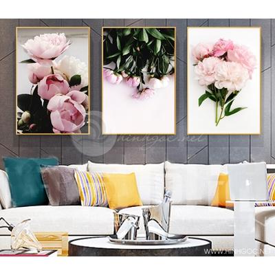 Hoa trà hồng - STTV3-66