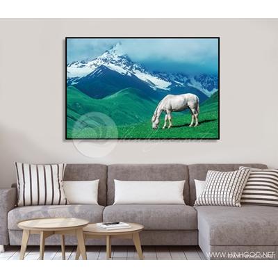 Ngựa và núi - STTV4-18