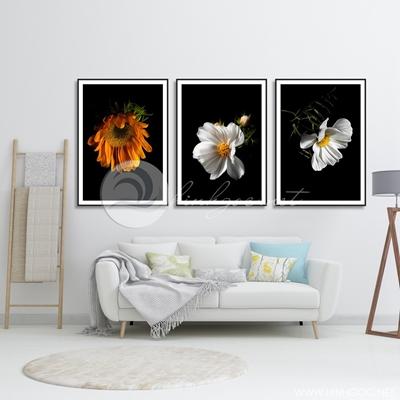 ba bức hoa trang trí nghệ thuật - TBAV12-28
