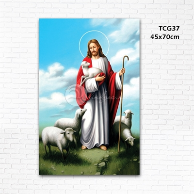 Đức cha và cừu - TCG37