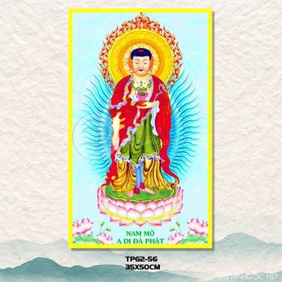 Phật di đà - TPG-56