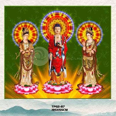 Phật và đài sen - TPG-87