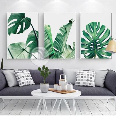 Bộ ba lá cây nhiệt đới - TT202