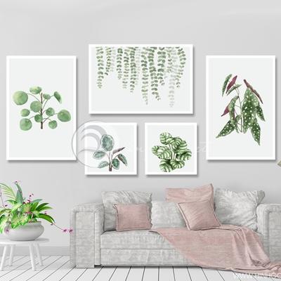 Bộ tranh lá cây nhiệt đới - TT204