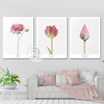 Bộ ba bông hoa - TT210