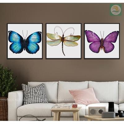 Tranh bộ 3 con bướm TV488