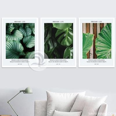 Bộ lá cây nhiệt đới - VM58