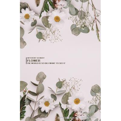 Hoa trắng - BTT298