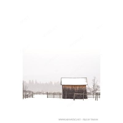 Ngôi nhà dưới tuyết - BTT307