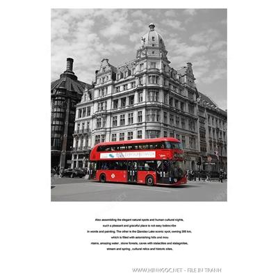 Xe bus màu đỏ - BTT311