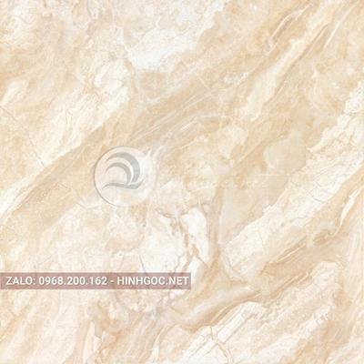 Hình in ấn, nền đá cẩm thạch chất lượng cao - FEDCT-298