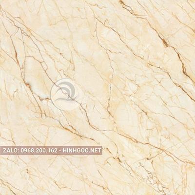 Hình in ấn, nền đá cẩm thạch chất lượng cao - FEDCT-299