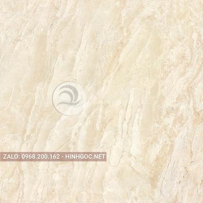 Hình in ấn, nền đá cẩm thạch chất lượng cao - FEDCT-300