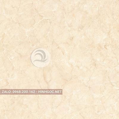 Hình in ấn, nền đá cẩm thạch chất lượng cao - FEDCT-308