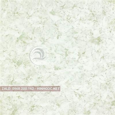 Hình in ấn, nền đá cẩm thạch chất lượng cao - FEDCT-317
