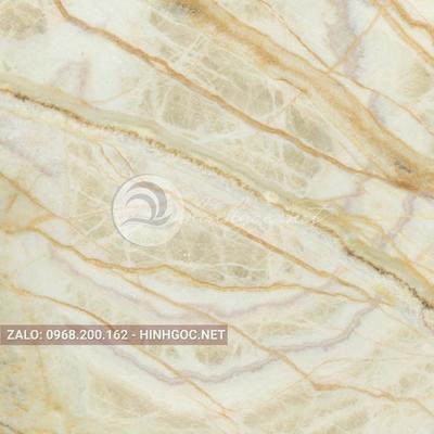 Hình in ấn, nền đá cẩm thạch chất lượng cao - FEDCT-318