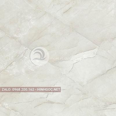 Hình in ấn, nền đá cẩm thạch chất lượng cao - FEDCT-323