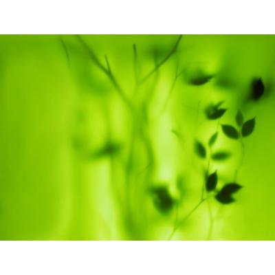Hiệu ứng nền background nền xanh green-imagestock_1497254