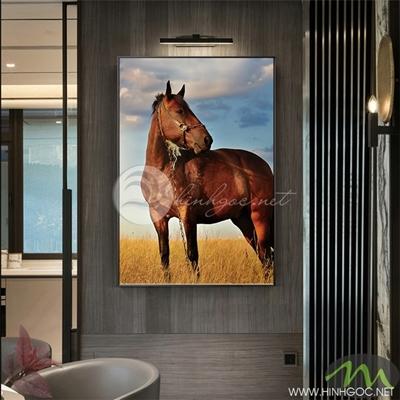 Tranh ngựa nâu trên cánh đồng - PEN90