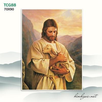 Tranh công giáo  - TCG88