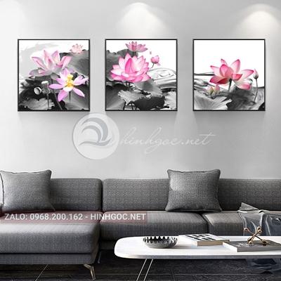 Tranh bộ 3 bức, tranh hoa sen hồng-THC-117